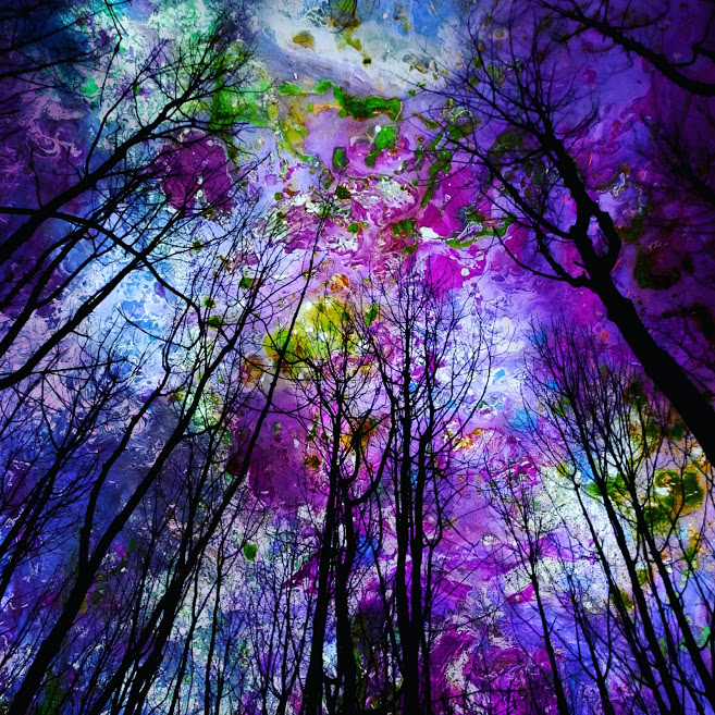 Astral Woods